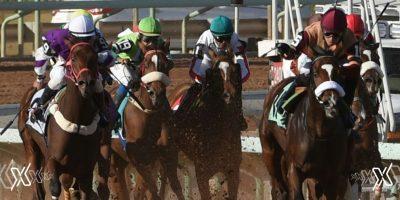 horse race saudi cup