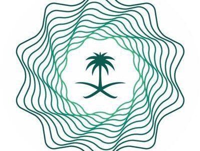 Saudi Budget